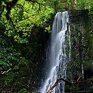 Matai Falls Moment - Catlins New Zealand by Norman Repacholi