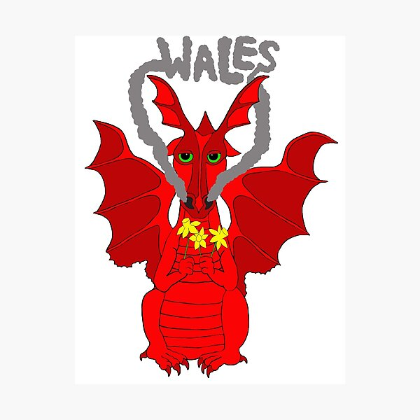 Mens White T-shirt Welsh Dragon Football Supporters Fire in my heart Print