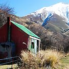 Old Shearers Hut by Marguerite Foxon