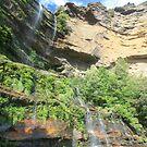 Katoomba Falls by Tim Coleman
