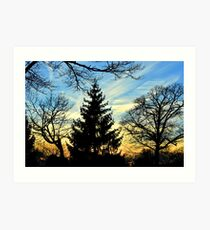 Silhouetted trees at sunset! Art Print