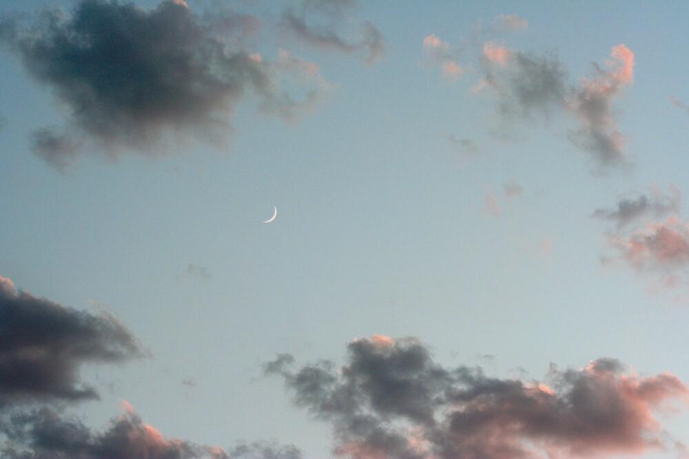 Ivanpah Moon by Chris Clarke