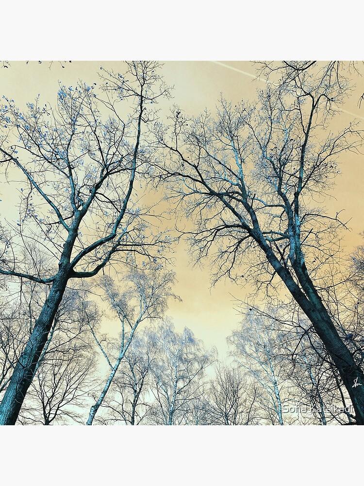 Trees Infrared  by Sofiakat