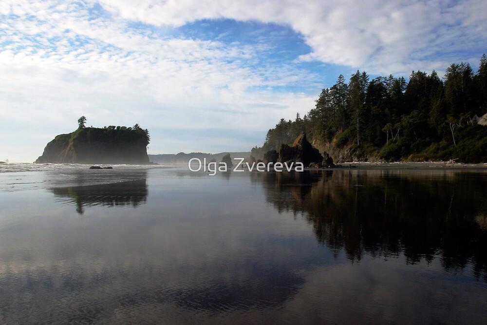 Low Tide Reflection by Olga Zvereva