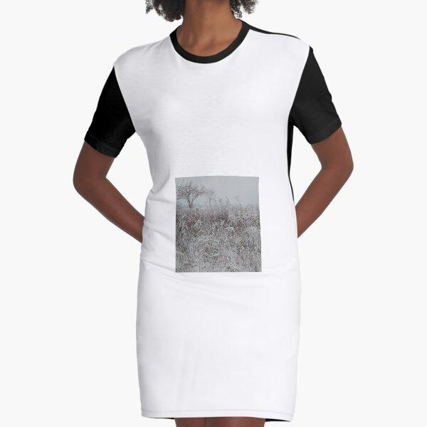 Snow Panorama - Снежная панорама Graphic T-Shirt Dress