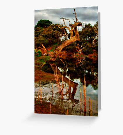 """""""Aging Reflections"""" Greeting Card"""