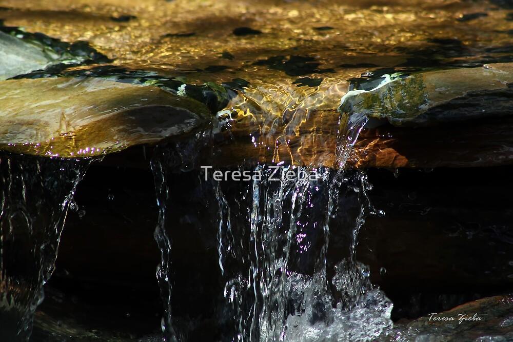 Rushing Water by Teresa Zieba