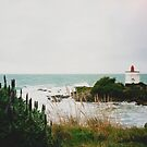 New Zealand Lighthouse by Karin Elizabeth