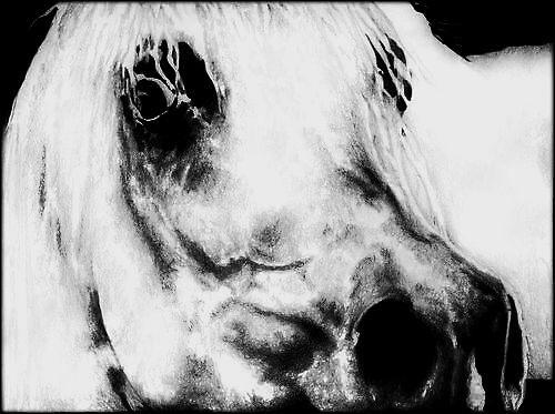 Spirit by darkangels280