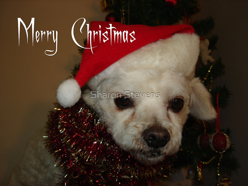 Have a Merry Christmas by Sharon Stevens