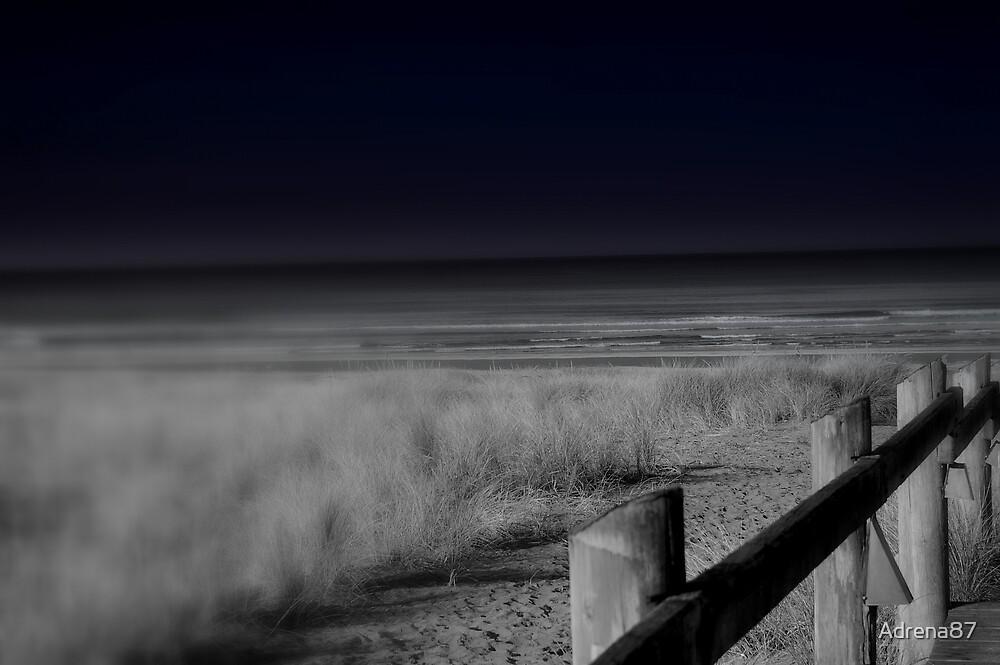 Night Walk by Adrena87