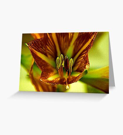 Factalius Stamen Greeting Card