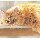 cat in sun watercolor by Mike Theuer