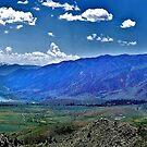 Mono Lake (panorama) by Nancy Richard