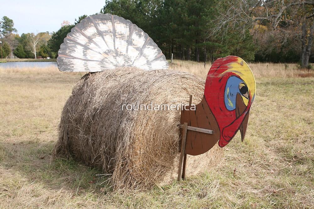 Hay Bale Turkey at Agnors Ranch near Marshall, Texas by roundamerica