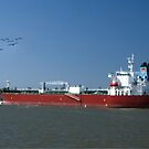 Ship at Galveston by LarryB007