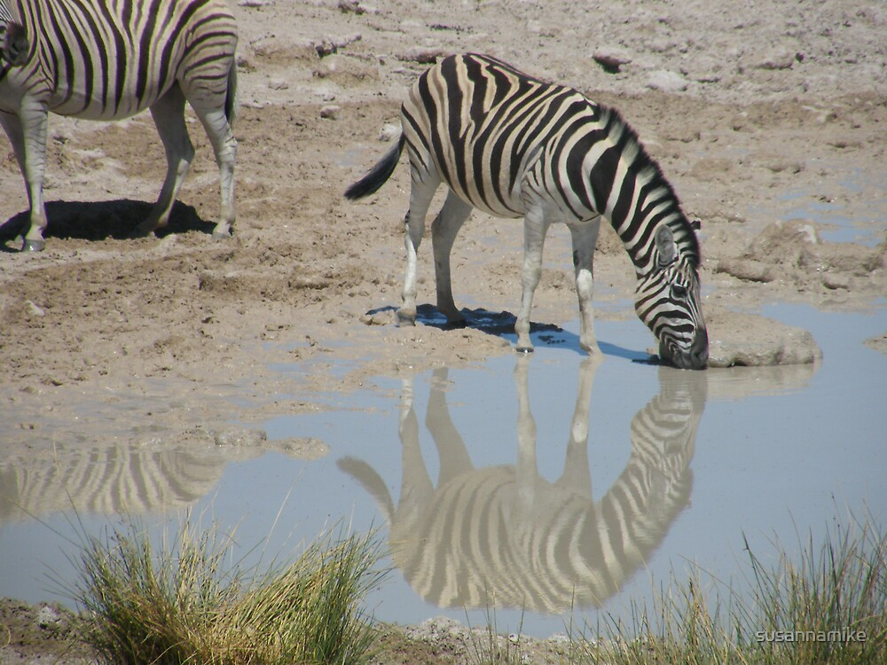 Striped Reflection by susannamike