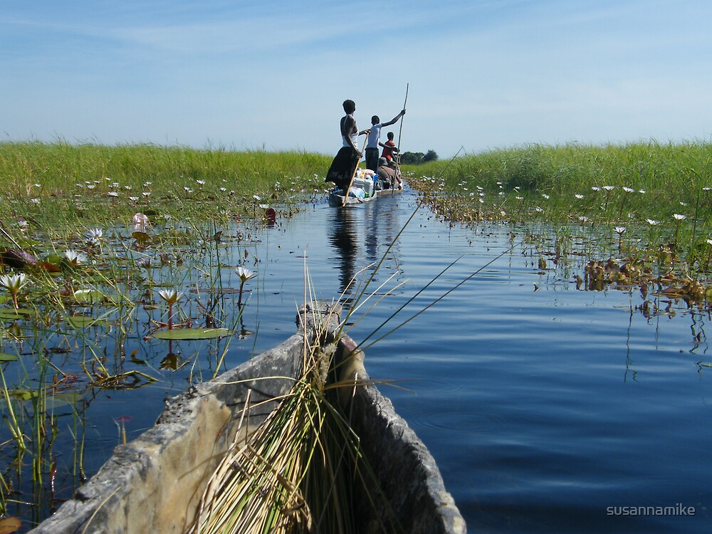 Poling through the Delta by susannamike