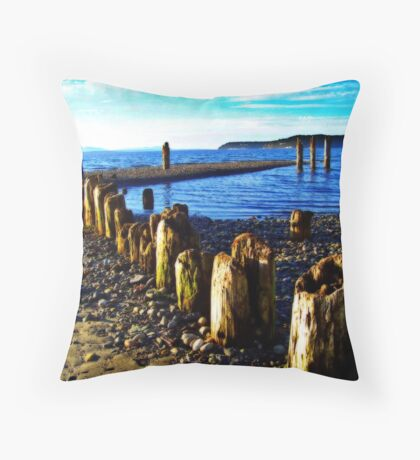 Picnic Point Pilings 2 Throw Pillow