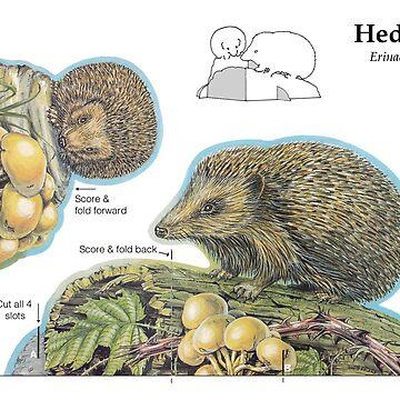 Hedgehog Stand-up Model by lewisroland