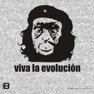Viva La Evolución by David Avatara