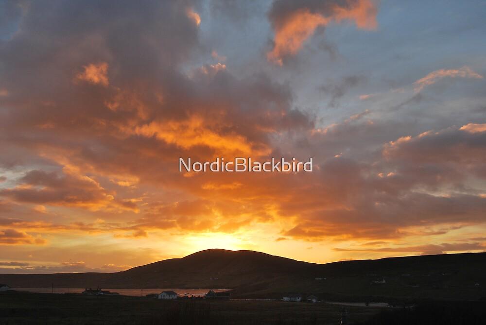 le roi soleil by NordicBlackbird