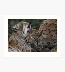 Caring for each other Art Print