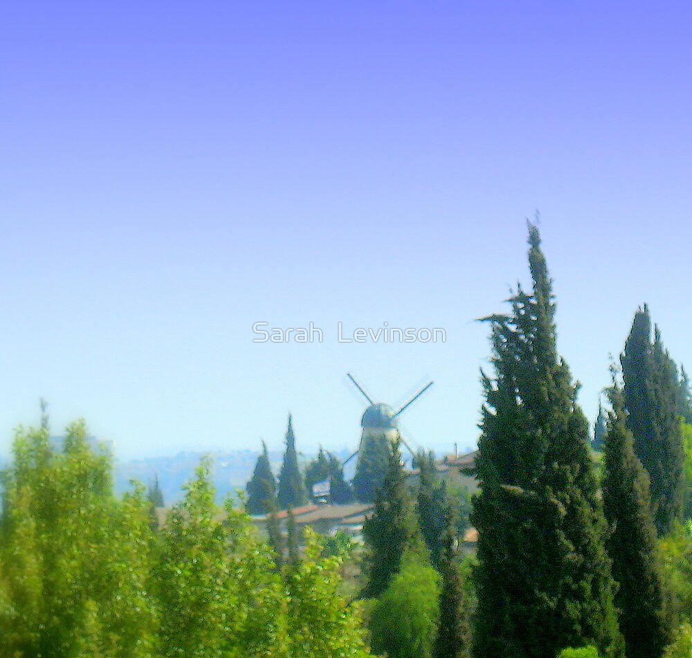 The Windmill in Jerusalem by Sarah  Levinson