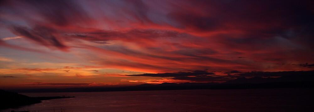 Ballard Buff Overlooking Puget Sound by IanPharesPhoto