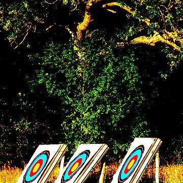 aim long by HarryHutchin