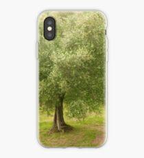 olive tree of italie iPhone Case