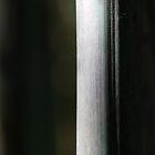 purely vertical by yvesrossetti