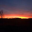 Louisiana Sunset III by KSkinner