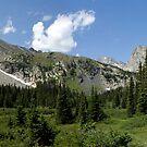 Long Lake, Colorado 2008 by MarcVDS