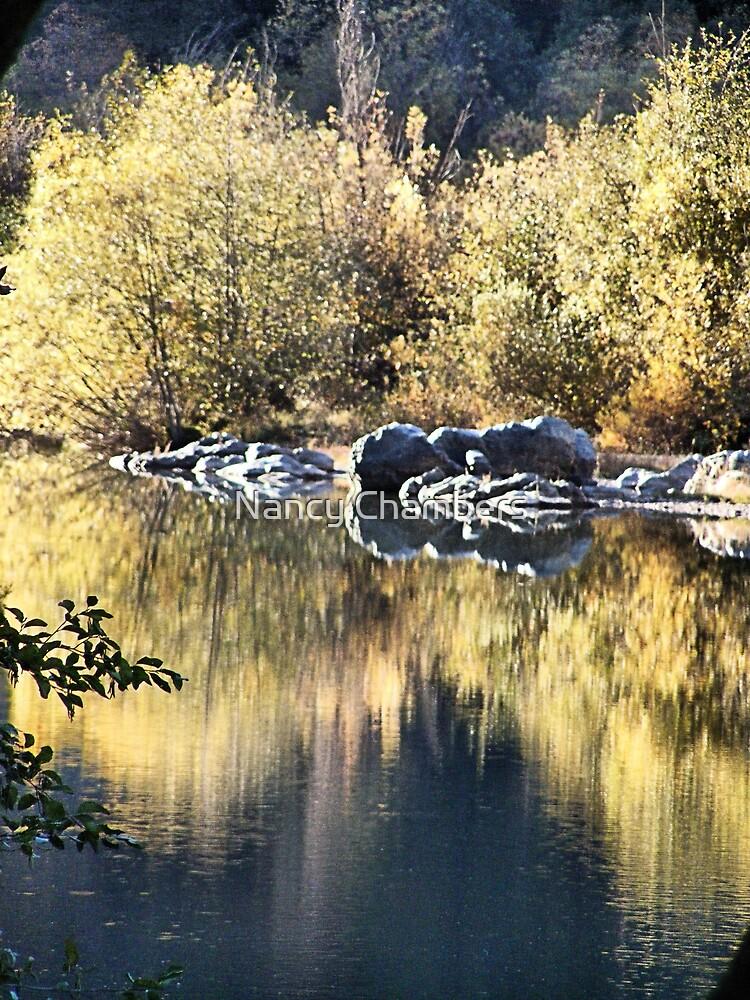 Bear River Reflections by NancyC