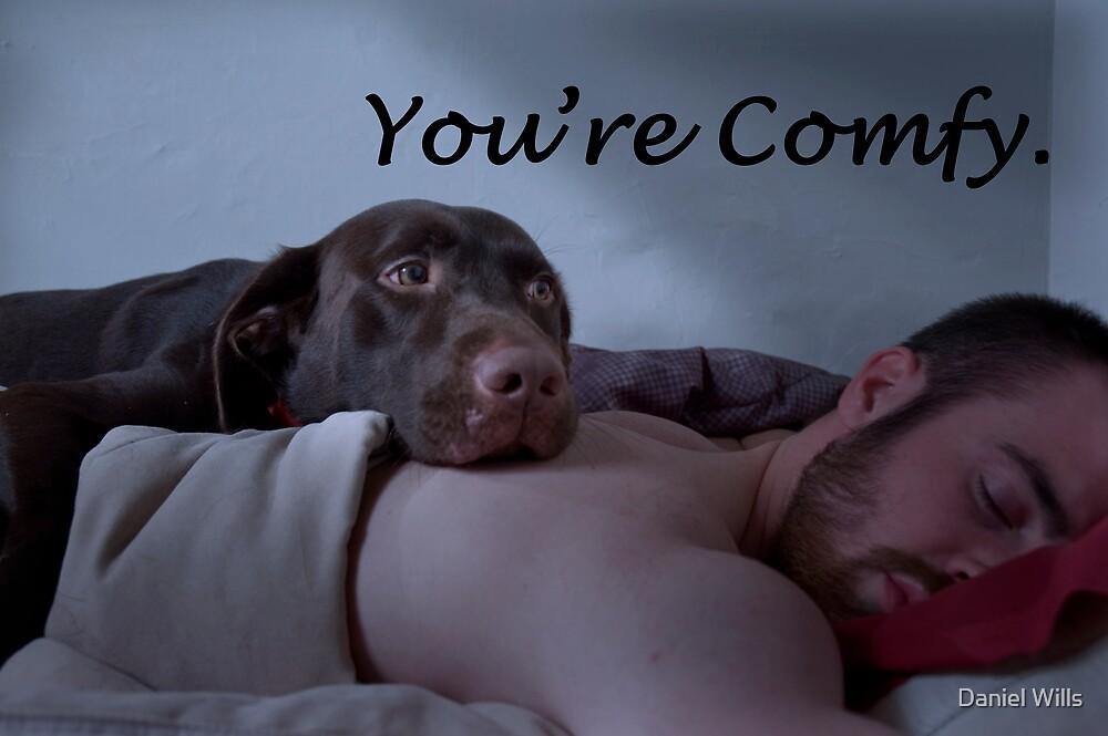comfy by Daniel Wills