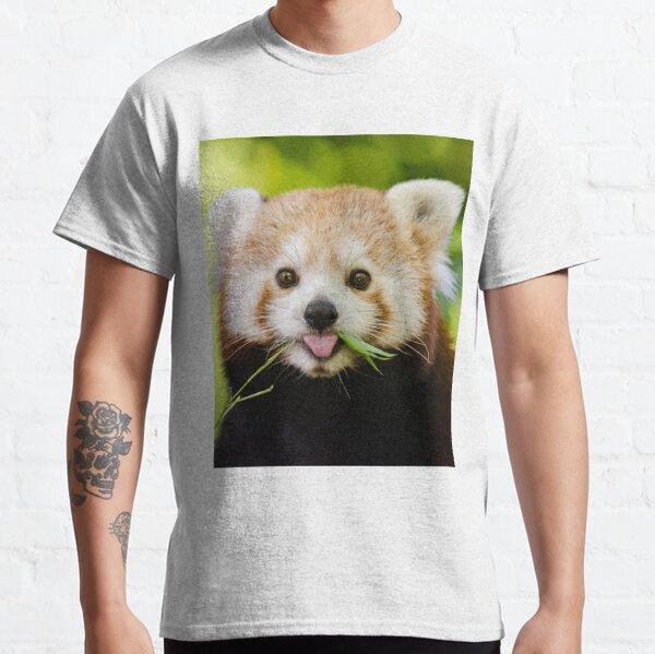 Cute Cuddly Red Panda Classic T-Shirt