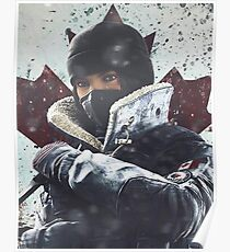 Frost R6S Poster