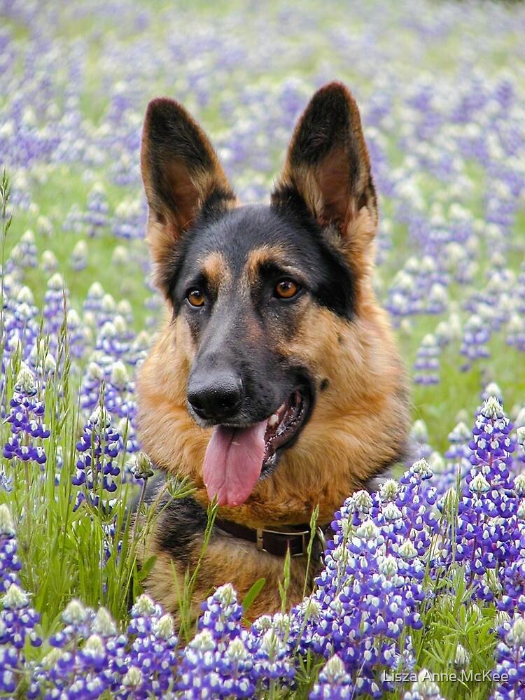 Alsatian German Shepherd in flowers K9 by Lisza Anne McKee