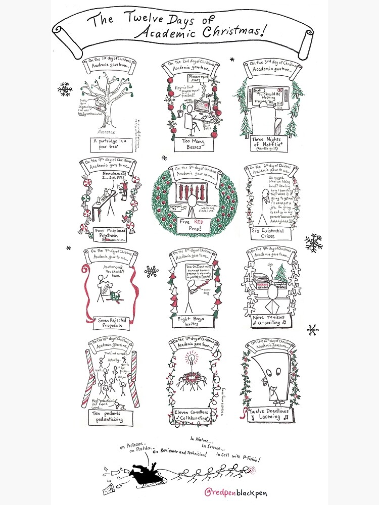 The Twelve Days of Academic Christmas by redpenblackpen