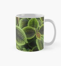 Green Ric Rac Edging Mug