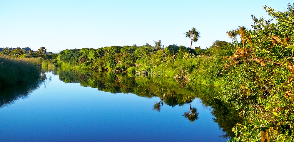 Reflections along West Coast (NZ) by amko