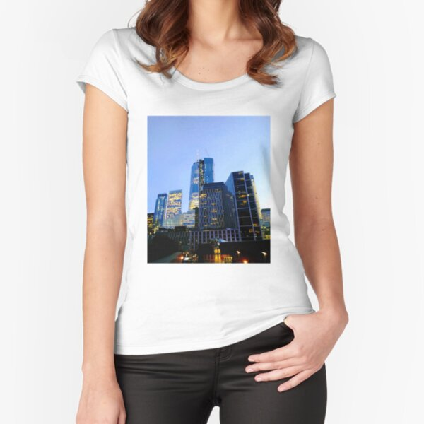 Lower Manhattan, New York, NY Fitted Scoop T-Shirt