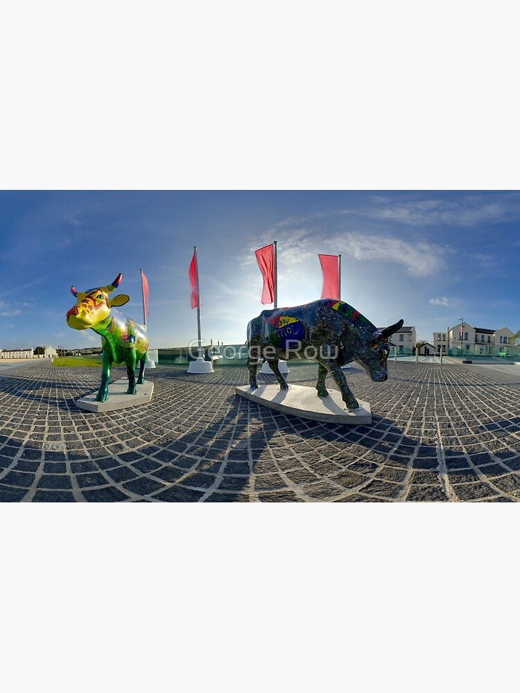 Two Cows on Parade, lower - Ebrington Square, Derry by VeryIreland