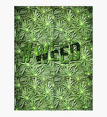 #WEED Photographic Print