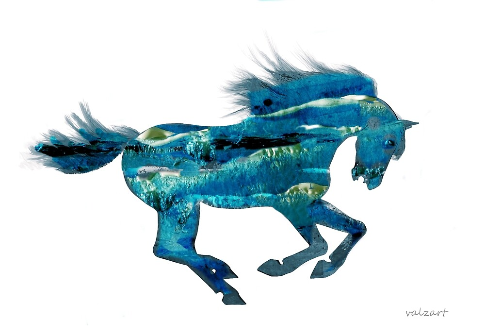 Seahorse by Valerie Anne Kelly
