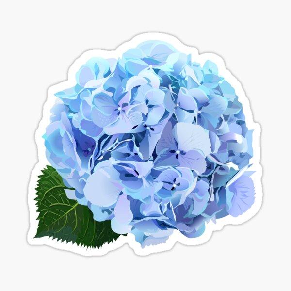 Watercolor style hydrangea flowers set.  Sticker