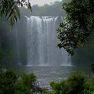 Rainbow Falls,  Kerikeri, New Zealand by Roy  Massicks