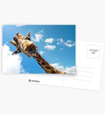 Hello Giraffe! Postcards