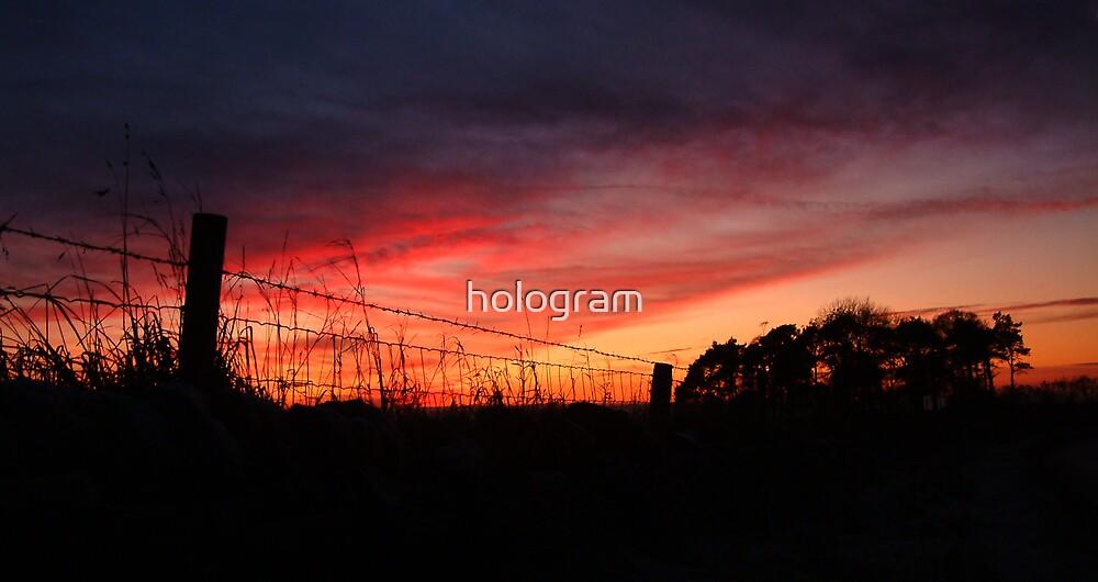 Barbed Sunset by hologram